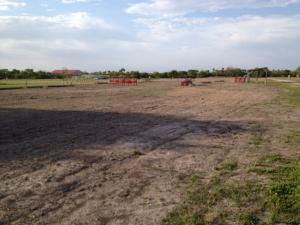 lead complex topsoil